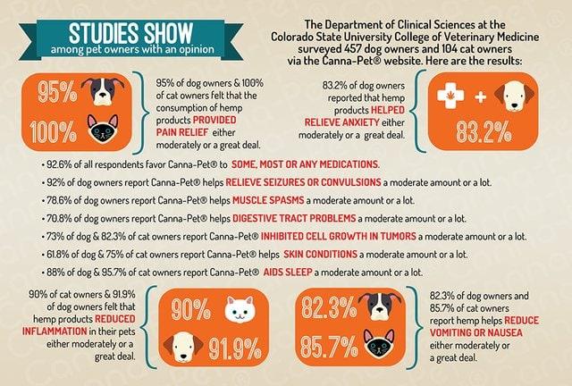CBD and pets analysis