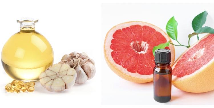 gut parasites remedies- grapefruit and garlic oils